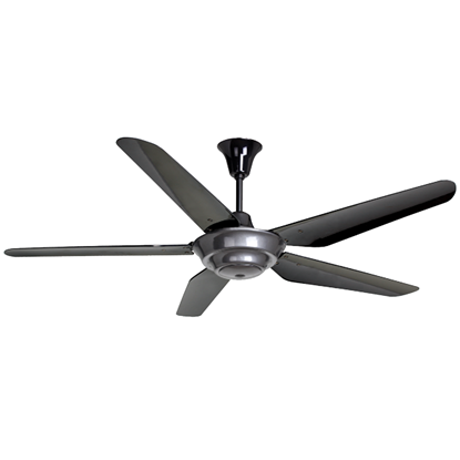 "Picture of RUBINE 56"" CEILING FAN, 5 BLADES, VETTA101-5BG"